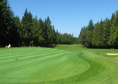Greens are looking good! August 28, 2015